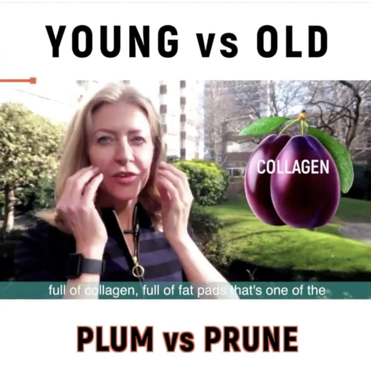Why you want to be a plum (not a prune)